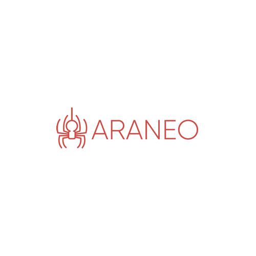 ARANEO Group